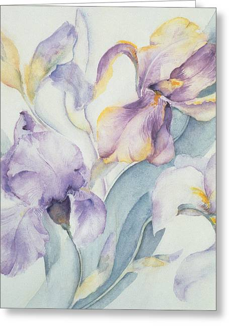 Flower Still Life Greeting Cards - Iris Greeting Card by Karen Armitage