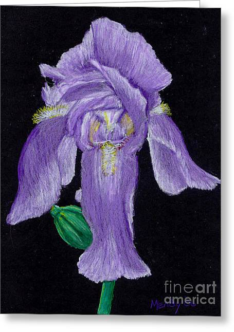 Iris Pastels Greeting Cards - Iris Greeting Card by Mendy Pedersen