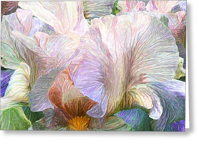 Bearded Iris Greeting Cards - Iris Moods 3 Greeting Card by Carol Cavalaris