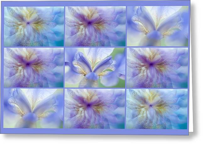 Iris Rhapsody In Blue. Polyptych Greeting Card by Jenny Rainbow