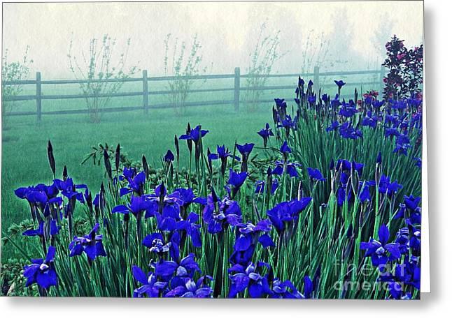 Irises At Dawn 3 Greeting Card by Sarah Loft