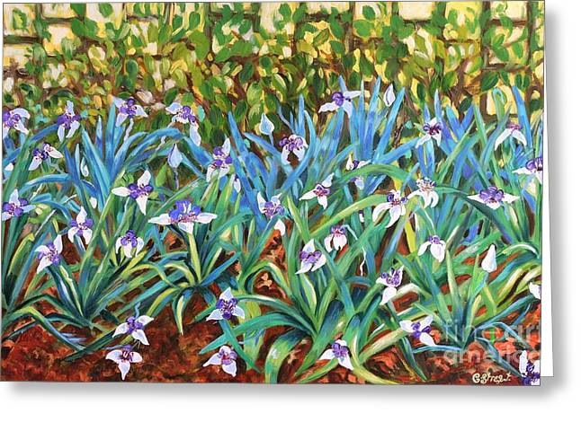 Caroline Street Greeting Cards - Irises Greeting Card by Caroline Street