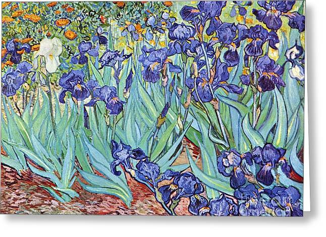 Pd Greeting Cards - Irises Greeting Card by Pg Reproductions