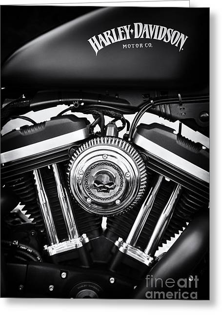 Monochrome Greeting Cards - Iron 883 Greeting Card by Tim Gainey