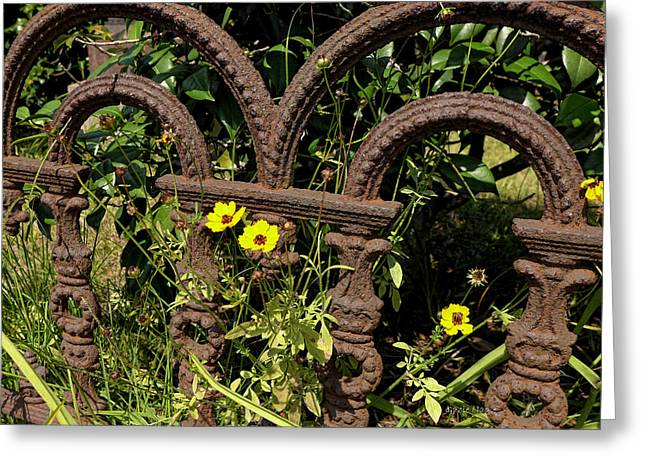 Historic Statue Greeting Cards - Iron and Flowers Greeting Card by Gazie Nagle