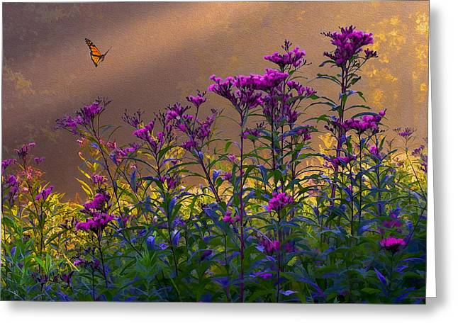 Ron Jones Greeting Cards - Ironweed Greeting Card by Ron Jones