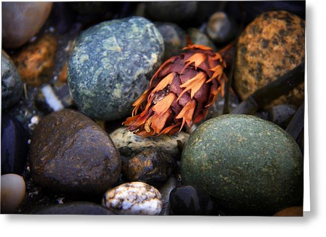 Stones Greeting Cards - Isakro One Greeting Card by Julius Reque