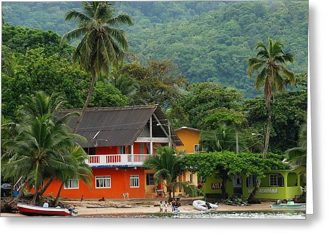 Panama Greeting Cards - Isla Grande Greeting Card by Iris Greenwell