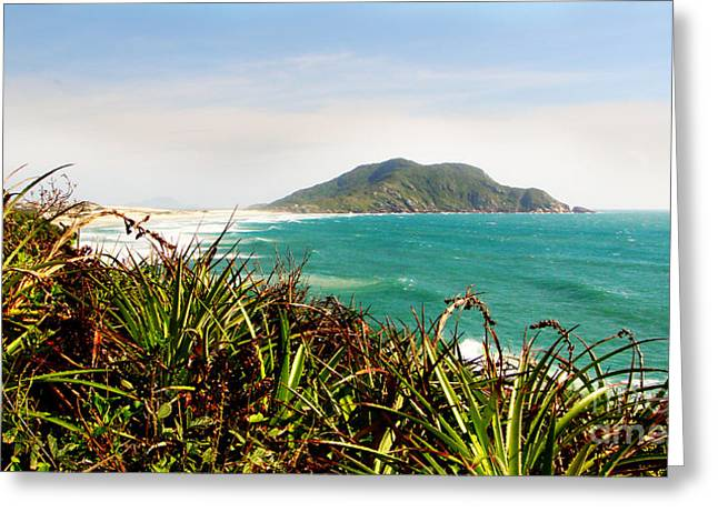 Hiking Tapestries - Textiles Greeting Cards - Island Hills Greeting Card by James Hennis