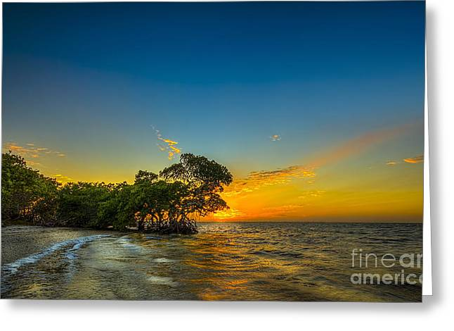 Gulf Of Mexico Scenes Greeting Cards - Island Paradise Greeting Card by Marvin Spates