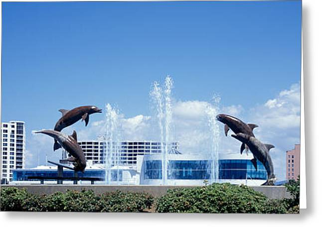 Theme Park Greeting Cards - Island Park Sarasota Florida Usa Greeting Card by Panoramic Images