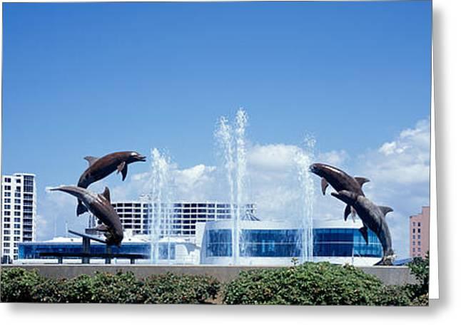 Metropolitan Park Greeting Cards - Island Park Sarasota Florida Usa Greeting Card by Panoramic Images