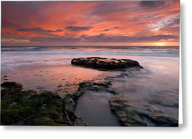 Kelp Greeting Cards - Isle of the Setting sun Greeting Card by Mike  Dawson
