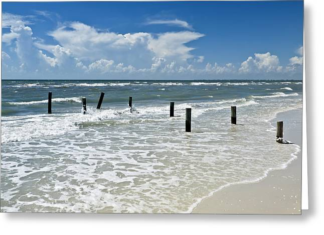 Gulf Of Mexico Scenes Greeting Cards - Isnt life wonderful? Greeting Card by Melanie Viola