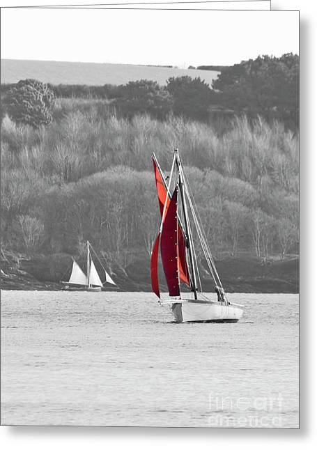 Isolated Yacht Carrick Roads Greeting Card by Terri Waters