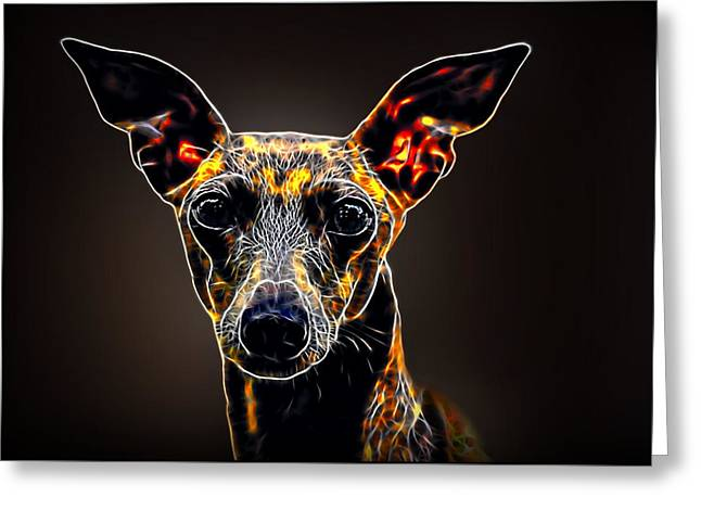 Italian Greyhound Greeting Card by Alexey Bazhan