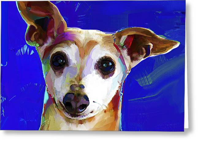 Greyhound Greeting Cards Greeting Cards - Italian Greyhound Greeting Card by Jackie Jacobson
