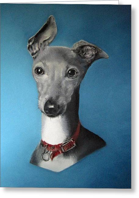 Greyhound Dog Greeting Cards - Italian Greyhound on blue Greeting Card by Juliet Matthews