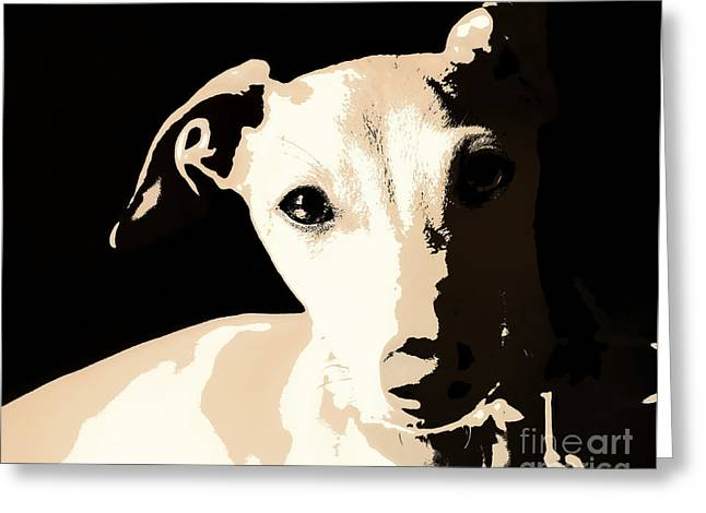 Italian Greyhound Poster Greeting Card by Angela Rath