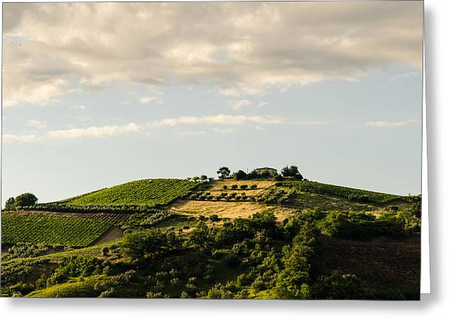 Italian Sunset Greeting Cards - Italy - Countryside 3 Greeting Card by Andrea Mazzocchetti
