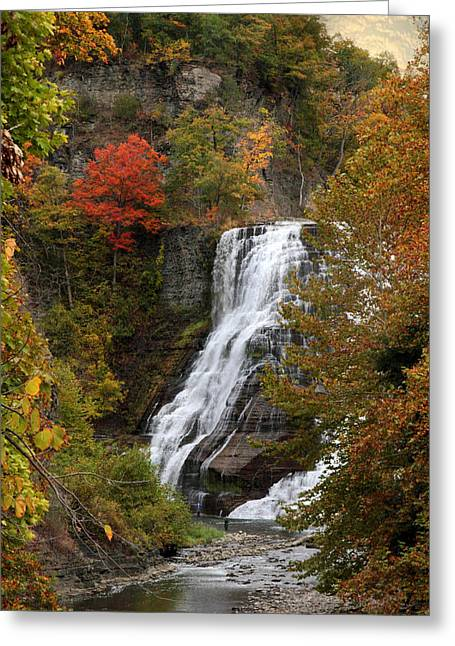 Ithaca Greeting Cards - Ithaca Falls Greeting Card by Jessica Jenney