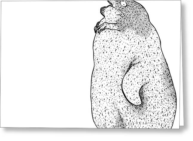 Wild Life Drawings Greeting Cards - Itius Greeting Card by Karl Addison