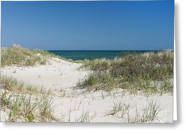 It's A Cape Cod Kind Of Day Greeting Card by Michelle Wiarda