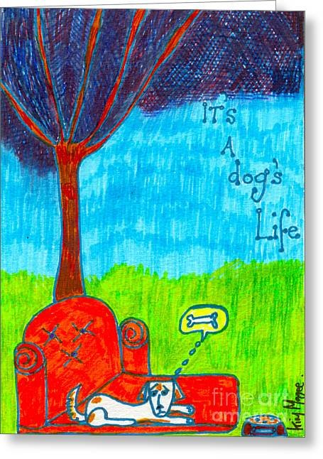 Maltese Drawings Greeting Cards - Its A Dogs Life Greeting Card by Kim Magee ART