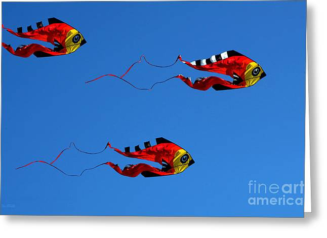 Clayton Greeting Cards - Its A Kite Kind Of Day Greeting Card by Clayton Bruster