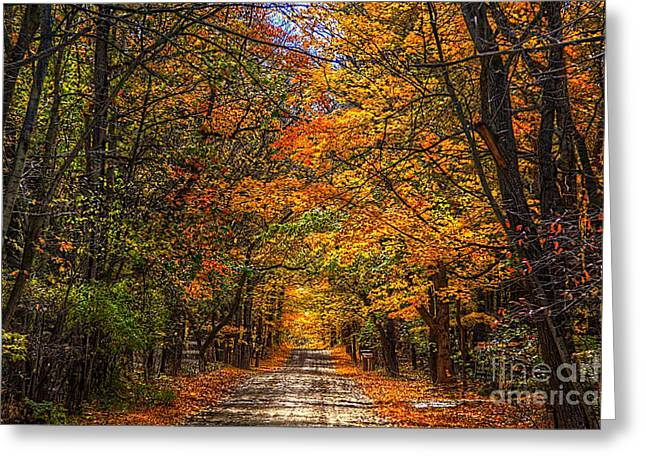 Its A Michigan Fall Greeting Card by Robert Pearson