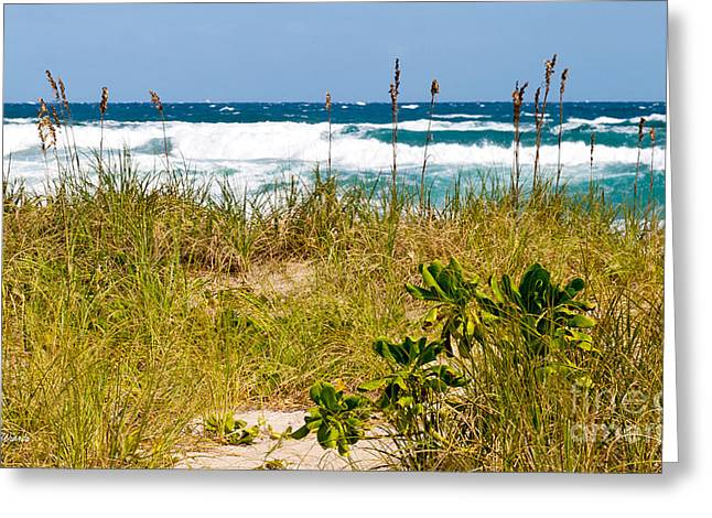 Michelle Photographs Greeting Cards - Its a Shore Bet Greeting Card by Michelle Wiarda