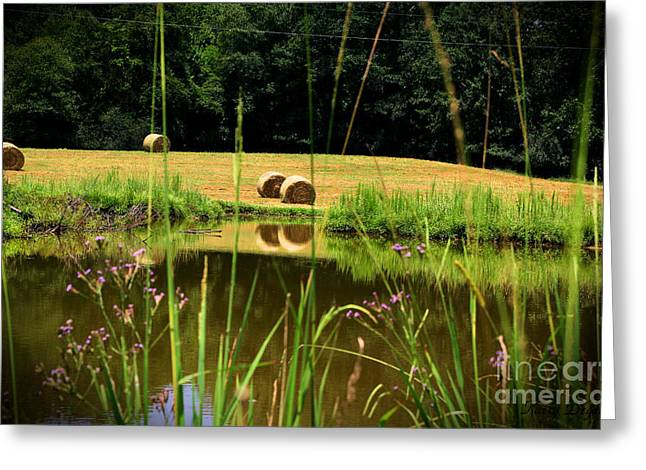 Hay Bales Greeting Cards - Its All In A Days Work  Greeting Card by Karry Degruise