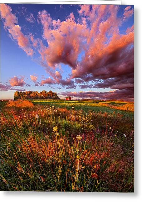 Red Barn Greeting Cards - Its Like Going to Heaven with Your Feet Still on the Ground Greeting Card by Phil Koch