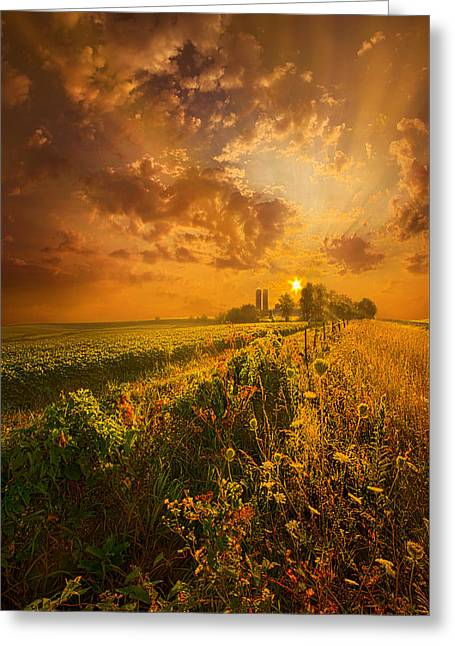 Nature Greeting Cards - Its Not The Heat. Its The Humidity Greeting Card by Phil Koch