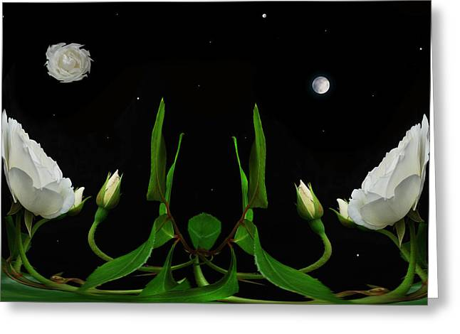 Floral Digital Art Greeting Cards - Its only a Rose Greeting Card by Terence Davis