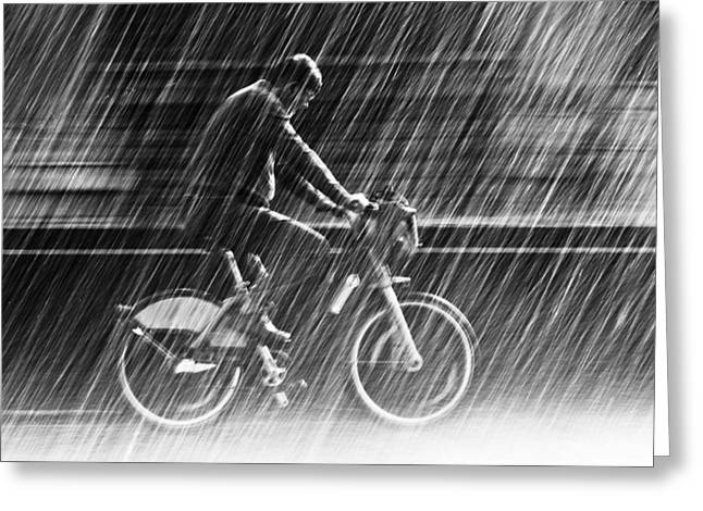 Black Man Greeting Cards - Its Raining Cats And Dogs Greeting Card by Christian Muller