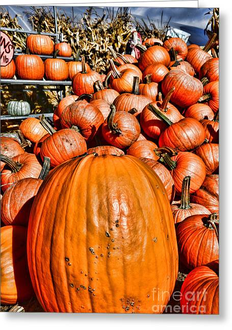 Patch Greeting Cards - Its the Great Pumpkin Greeting Card by Paul Ward