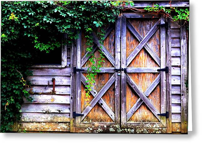 Barn Door Greeting Cards - Ivy Covered Wooden Shack Greeting Card by James DeFazio