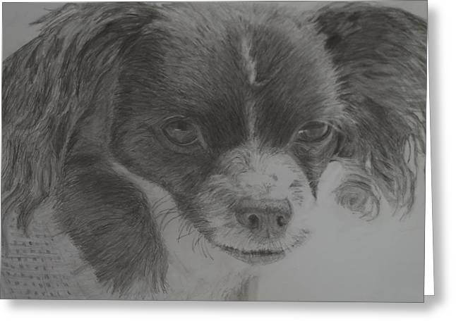 Puppies Drawings Greeting Cards - Izzy Greeting Card by Linda McMillen