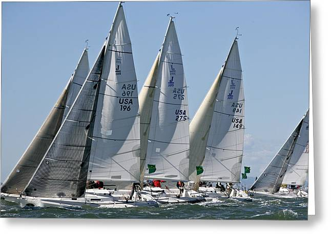 Sailboat Photos Greeting Cards - J105s Rolex Regatta SF Greeting Card by Steven Lapkin
