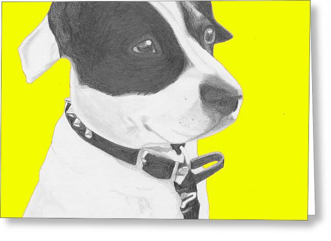 Jack Russell Crossbreed In Yellow Headshot Greeting Card by David Smith