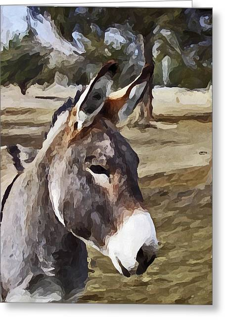 Jack Greeting Card by Susie Fisher