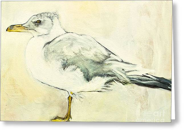 Water Fowl Mixed Media Greeting Cards - Jackson the Seagull Greeting Card by Carolyn Weltman