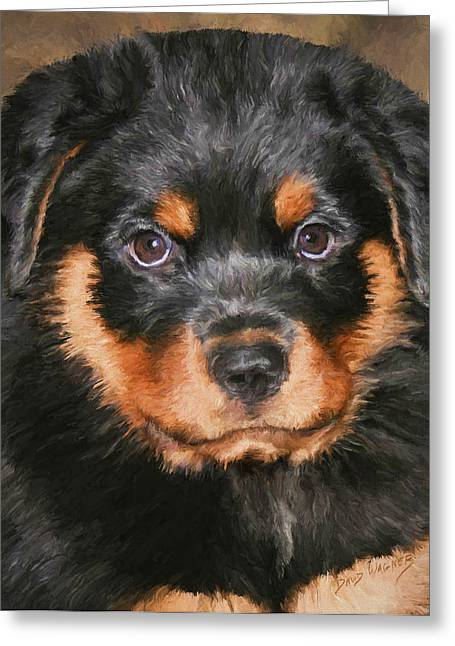 Rottweiler Puppy Greeting Cards - Jacob Greeting Card by David Wagner