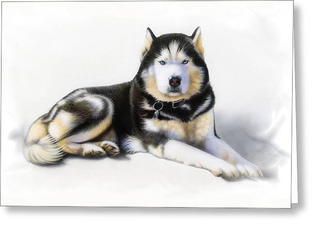 Huskies Paintings Greeting Cards - Jacob Greeting Card by Sandi Baker