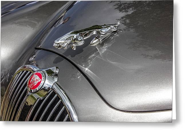 Jaguars Greeting Cards - Jaguar car Greeting Card by Thanet Photos
