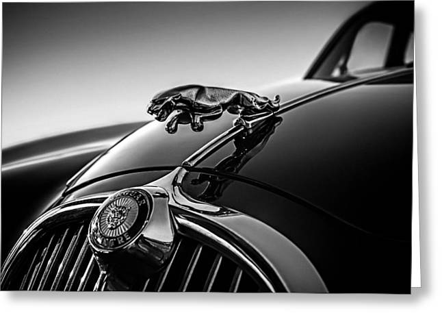 Collector Hood Ornament Greeting Cards - Jaguar Mascot Greeting Card by Douglas Pittman