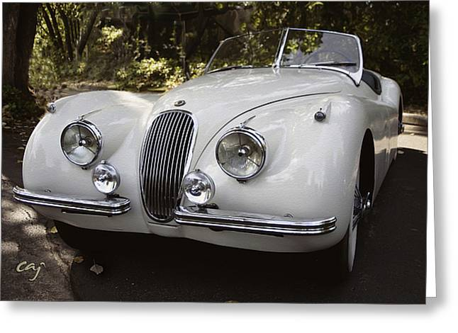Jaguar XK120 Doing a Time Out Greeting Card by Curt Johnson