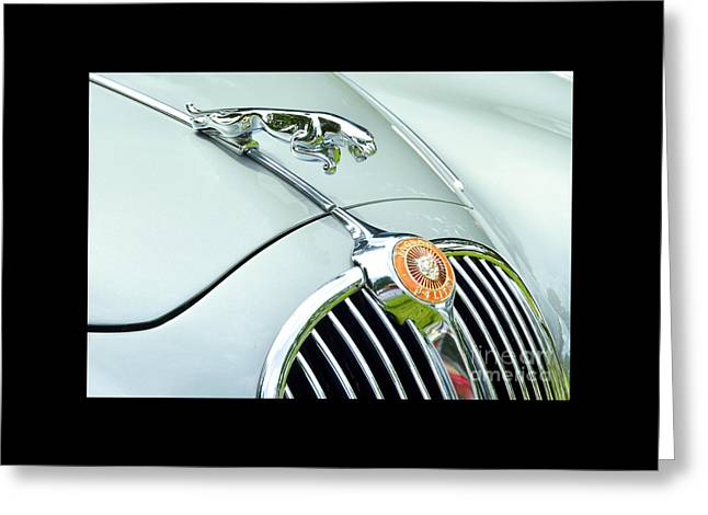 Jaguars Greeting Cards - Jaguar XK150 Hood Ornament Greeting Card by Allen Beatty