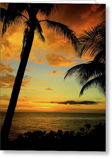 Kamil Greeting Cards - Jamaican Night Greeting Card by Kamil Swiatek
